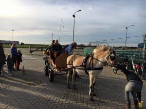 paard-en-wagen-rijden